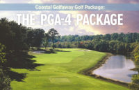 The PGA-4 Package