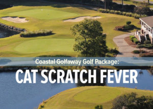 Cat Scratch Fever featuring the Big Cats of Ocean Ridge Plantation